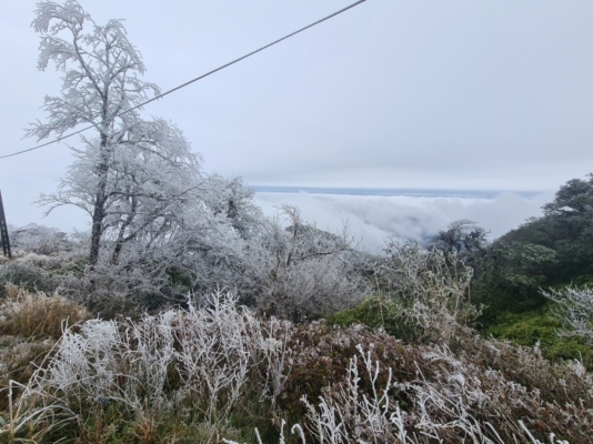 Phja Oac mountain (Thanh Cong commune, Nguyen Binh District) covered by white frost