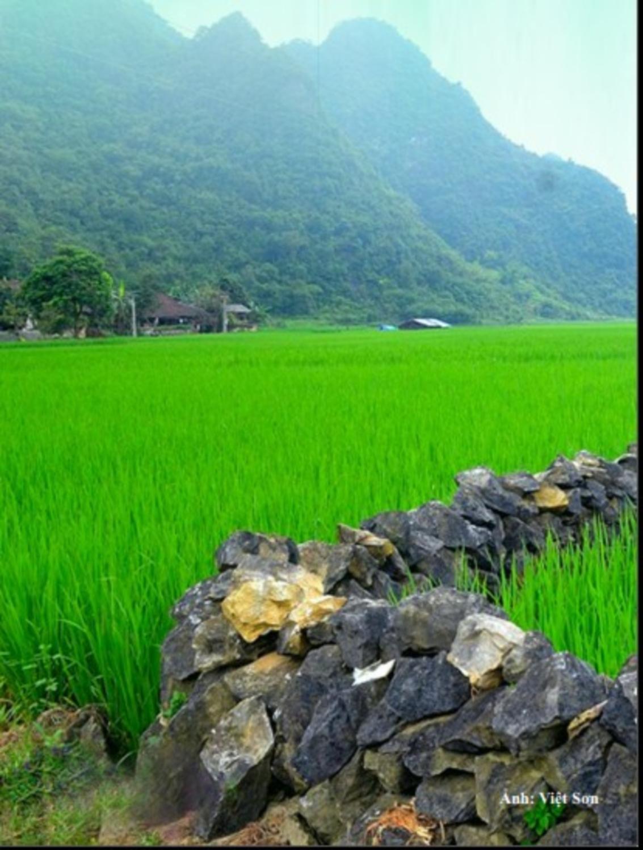Rock fencing – Distinct cultural feature of people in Phuc Sen, Quang Uyen